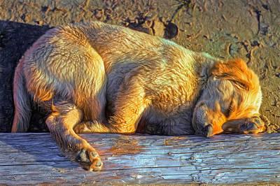Golden Retriever Digital Art - Pooped Puppy - Paint by Steve Harrington