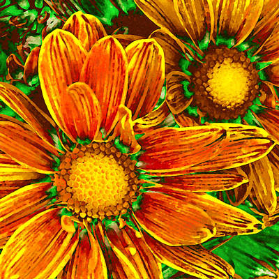 Abstract Flowers Royalty-Free and Rights-Managed Images - Pop Art Daisies 8 by Amy Vangsgard