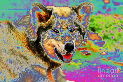 Photograph - Pop Art Husky by Doc Braham