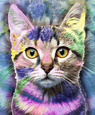 Fuzzy Mixed Media - Pop Cat by Tony Rubino
