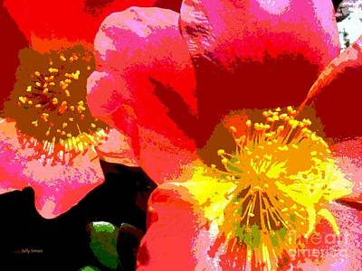 Art Print featuring the photograph Pop Goes The Poppy by Sally Simon