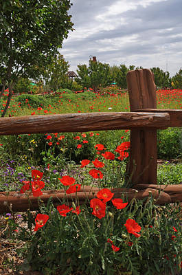 Poppies At The Farm Art Print
