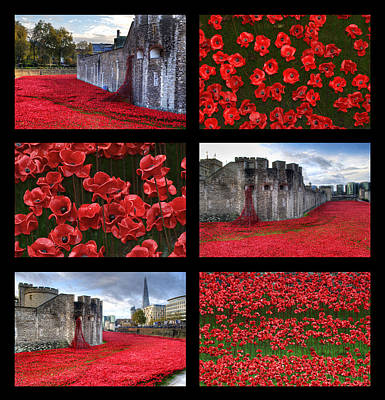 Photograph - Poppies At The Tower Collage by Chris Day