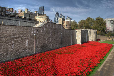 Photograph - Poppies At The Tower Of London by Chris Day