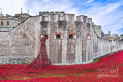 Tower Of London Digital Art - Poppies At The Tower Of London by Graham Prentice