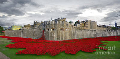Sweep Of The Land Digital Art - Poppies At The Tower Of London by J Biggadike