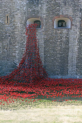 Pasta Al Dente - Poppies at the Tower of London by Julia Gavin