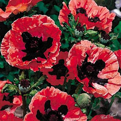 Poppies Art Print by Cole Black