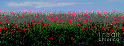 Popp Digital Art - Poppies Field by Jean luc Comperat