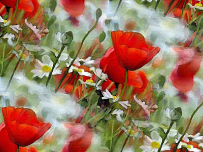 Poppies In The Field Art Print