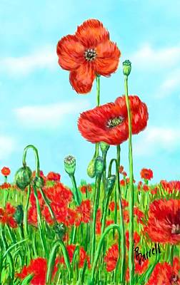 Poppies N' Pods Art Print by Ric Darrell