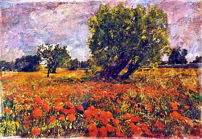 Poppies Of Puglia Art Print by Steven Boone