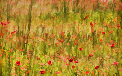 Painting - Poppies Of Tuscany by David Letts
