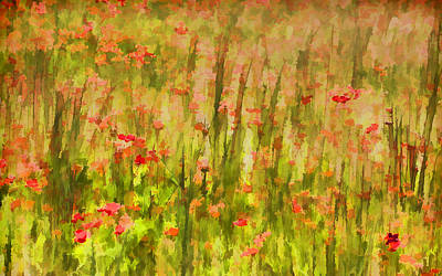 Painting - Poppies Of Tuscany II by David Letts