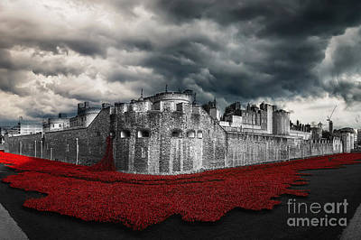 Sweep Of The Land Digital Art - Poppies Tower Of London by J Biggadike