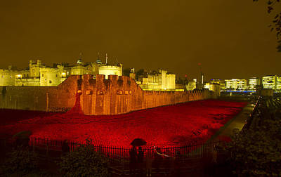 Photograph - Poppies Tower Of London Night by David French