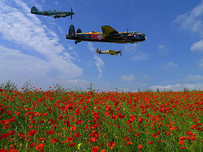Photograph - Poppy Field Flypast by Ken Brannen