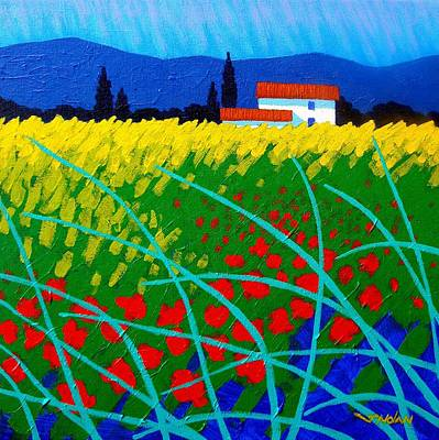 Cottage Ireland Painting - Poppy Field France by John  Nolan