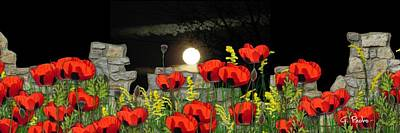 Photograph - Poppy Field In The Moonlight by George Pedro