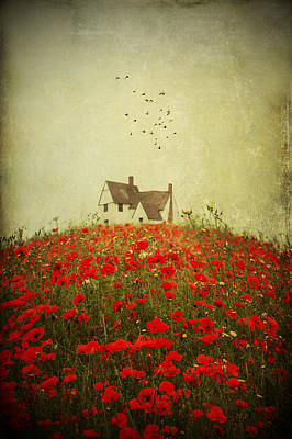 Pyrography - Poppy Field Wth Vintage Textures by Ethiriel  Photography