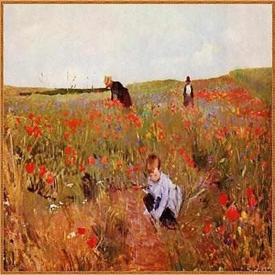 Painting - Poppy Fields by Florene Welebny
