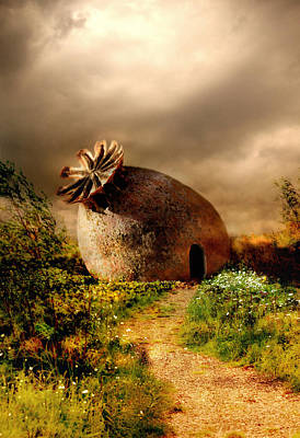 Poppy House In A Sunny Day Art Print