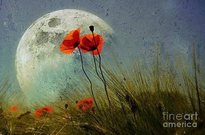 Poppy In The Moon Art Print by manhART