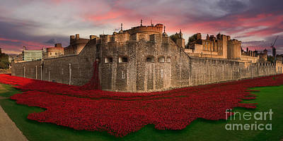 Tower Of London Digital Art - Poppy Sea  by J Biggadike