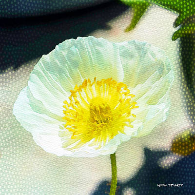 Manipulation Photograph - Poppy Series - Beside The Sidewalk by Moon Stumpp