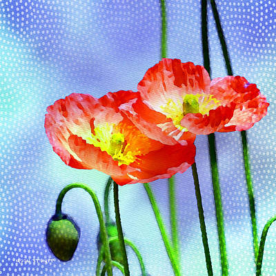 Manipulation Photograph - Poppy Series - Garden Views by Moon Stumpp