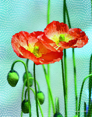 Manipulation Photograph - Poppy Series - Quite by Moon Stumpp