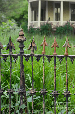 Photograph - Porch And Iron Fence by Jill Battaglia