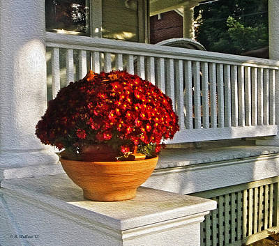 Porch Beauty Print by Brian Wallace