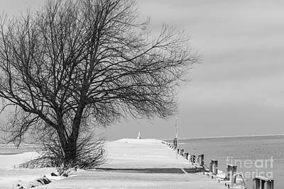 Photograph - Port Dalhousie Pier In Winter by JT Lewis
