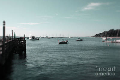 Photograph - Port Jefferson Harbor by Paul Cammarata