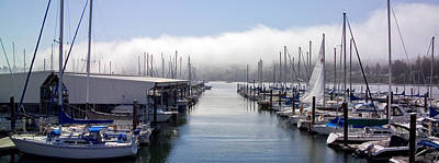Art Print featuring the photograph Port Kingston Marina by Greg Reed