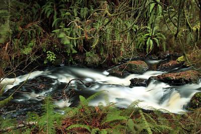 Photograph - Port Ludlow Falls by John Bushnell