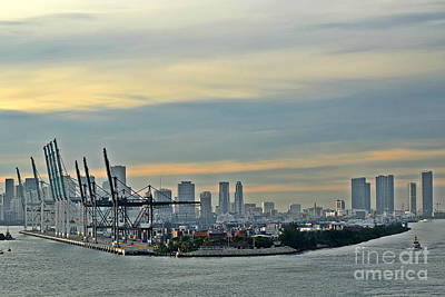 Port Of Miami Art Print