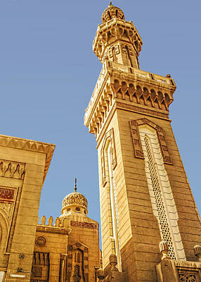 Photograph - Port Said Mosque by Maria Coulson