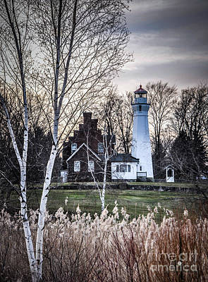 Photograph - Port Sanilac Light With Tree by Ronald Grogan