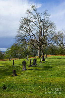 Photograph - Port Townsend Cemetery by Deanna Proffitt