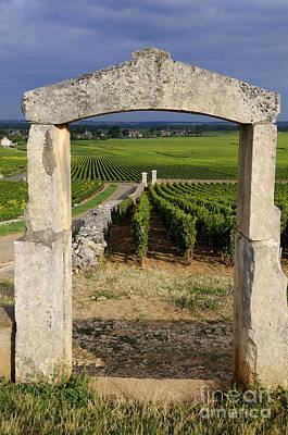 Portal  Of Vineyard.burgundy. France Print by Bernard Jaubert
