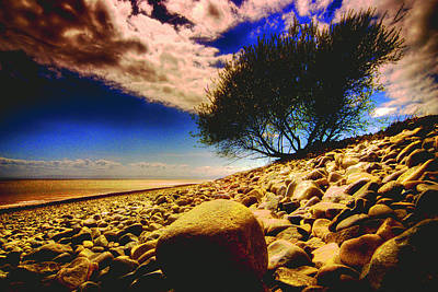 Wales Photograph - Porthkerry Shore by Robert J Taylor