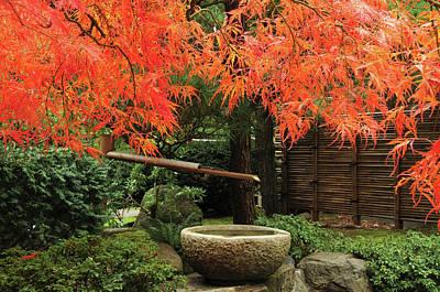 Intimate Garden Photograph - Portland Japanese Garden In Autumn by Michel Hersen