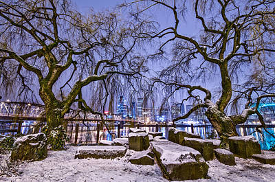 Winter Scene Photograph - Portland Twin Trees by Darren  White