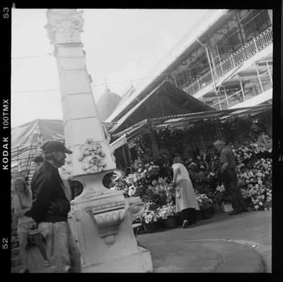 Becky Photograph - Porto Flower Stand by Becky Kozlen