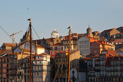 Photograph - Porto Portugal by Cascade Colors