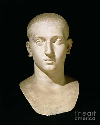 Effigy Sculpture - Portrait Bust Of Emperor Severus Alexander by Anonymous
