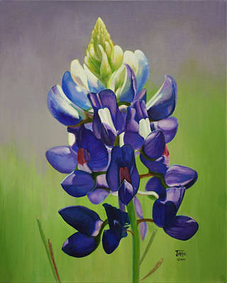 Portrait Of A Bluebonnet Art Print
