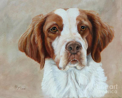 Painting - Portrait Of A Brittany Spaniel by Amy Reges